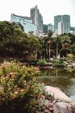 Офисные здания спрятанные за растительностью парка Гонконга стоковые фото