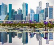 Офис в Сингапуре Стоковые Фото
