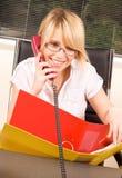 офис девушки Стоковая Фотография