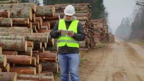 Офицеры леса проверяют кучи вносят дальше лес в журнал сток-видео