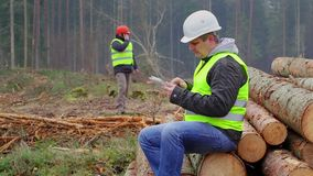Офицеры леса с ПК и сотовым телефоном таблетки в лесе сток-видео