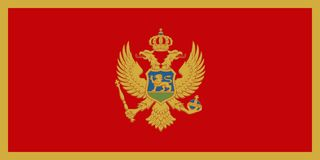 Официальный флаг вектора Черногории Стоковые Изображения RF