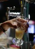 Официантка служа холодная вертикаль пива давления Стоковое Фото