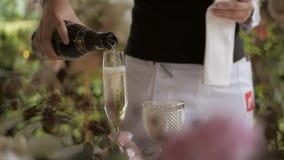 Официант льет шампанское от бутылки в стекло видеоматериал
