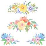 Оформление акварели флористическое для карточек и приглашения конструируют Стоковые Изображения
