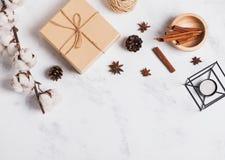 Оформление осени или зимы с конусами сосны и хлопок разветвляют стоковая фотография rf