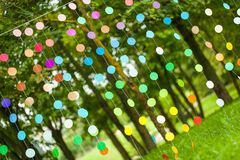 Оформление партии радуги живое Стоковое фото RF