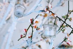 Оформление свадьбы, белая и зеленая ветвь дерева с blossoming бутонами, цветя ветви дерева с белыми цветками и гирлянда candl Стоковые Изображения