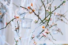 Оформление свадьбы, белая и зеленая ветвь дерева с blossoming бутонами, цветя ветви дерева с белыми цветками и гирлянда candl Стоковое Изображение RF
