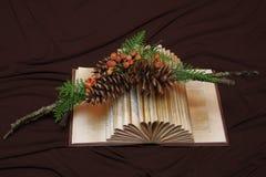 Оформление ручек и игл сосны на старой книге Стоковое Изображение
