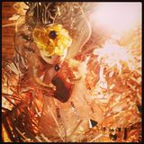 Оформление фотографии рождества Стоковые Фото
