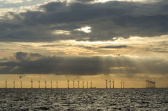 Оффшорное windfarm Lillgrund Стоковое Изображение RF