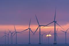 Оффшорный рассвет Lillgrund windfarm, Швеция Стоковые Изображения