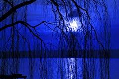 охлаженная синь Стоковые Изображения RF