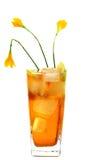 охлаженный лимон меда питья Стоковое Изображение RF