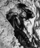 Охота пещеры Стоковая Фотография RF