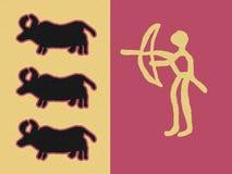 охотиться быков Стоковые Фотографии RF