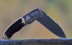 Охотиться карманный нож при дикие кабаны гравируя Стоковые Фото