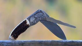 Охотиться карманный нож при дикие кабаны гравируя Стоковое Фото