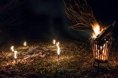 Охотиться простирание с оленями косуль Стоковая Фотография RF