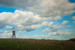 Охотиться стойка в европейском аграрном ландшафте Стоковые Фотографии RF