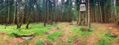 охотиться стойка Стоковая Фотография RF