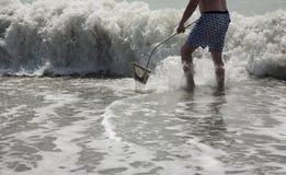 Охотиться для зубов акулы на пляже Флориде Венеции Стоковые Изображения