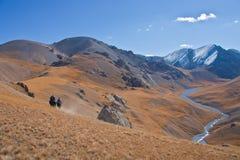 3 охотника на лошадях в горах Тянь-Шань Стоковое Изображение RF