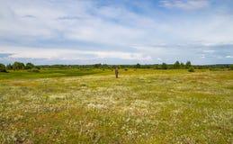 Охотник за сокровищами в поле с металлоискателем стоковые фото