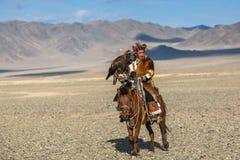 Охотник орла казаха на традиционной одежде, верхом пока охотящся к зайцам держа беркута на его руке Стоковая Фотография RF