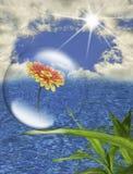 охрана окружающей среды Стоковое Изображение