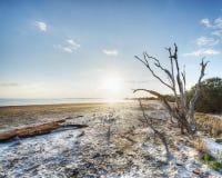 Охраняемая природная территория острова Меррита стоковое фото