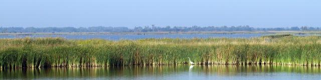 Охраняемая природная территория соотечественника Quivira Стоковые Изображения