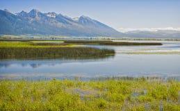 Охраняемая природная территория Ninepipe национальная, Монтана Стоковые Изображения