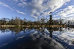 Охраняемая природная территория Nisqually, WA Стоковая Фотография