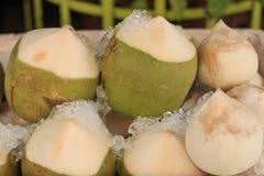 Охлаженный кокос Стоковое Изображение