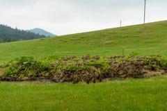 Очаг в открытой сельской местности стоковое фото