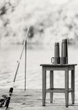 очарование девушки красивейшего черного брюнет классическое смотря белизну представления портрета фото вы Удить на реке Рыболовна Стоковые Изображения RF