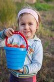 Очаровательная маленькая девочка выбирая вверх свежие зрелые органические томаты стоковое фото