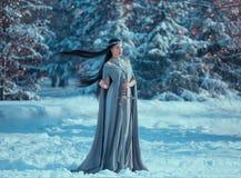 Очаровательная привлекательная дама в снежном лесе, воинствующая принцесса эльфа с черными длинными волосами летая держит шпагу,  стоковое фото