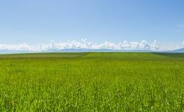 Очаровательный ландшафт 2 стоковые изображения