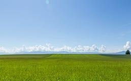 Очаровательный ландшафт 1 стоковые фотографии rf