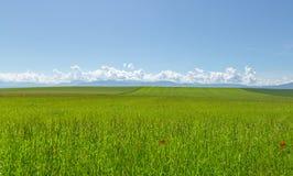 Очаровательный ландшафт 4 стоковое фото rf
