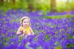 Очаровательная девушка малыша в bluebell цветет весной лес Стоковая Фотография