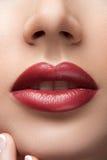 Очаровательные красные губы стоковые изображения rf