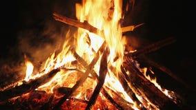 Очаровательные пламена костра акции видеоматериалы