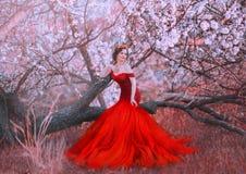 Очаровывая нимфа сидит на упаденном лесе дерева весной, даме в платье шикарного красного шарлаха длинном с обнаженными плечами стоковые фото