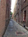 Очаровывая переулок булыжника Чарлстона красивый стоковые изображения rf