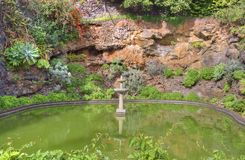 Очаровывая сад утеса на португальском парке острова стоковое фото rf