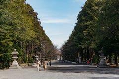 Очаруйте путь вдоль 2 сторон с много деревьев святыни Хоккаидо Jingu Хоккаидо с туристами в зиме в Саппоро Хоккаидо Стоковые Фотографии RF